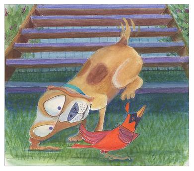 dog and cardinal.jpg