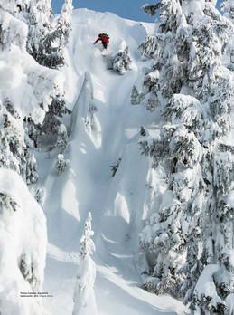 Snowboard Canada x Tamo Campos