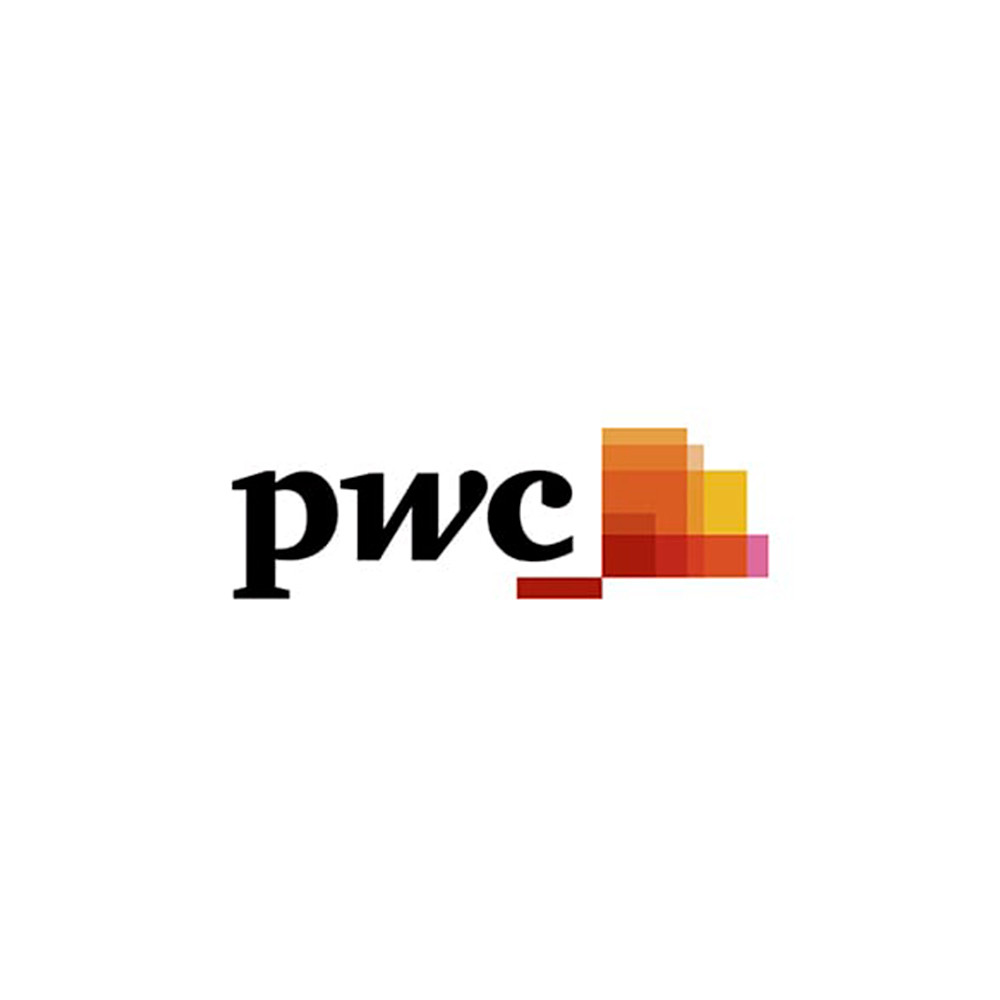 20 pwc consultora logo.jpg
