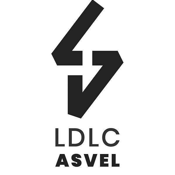asvel-logo.jpg