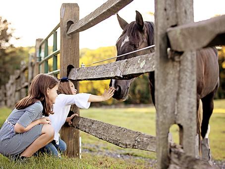 farm to photo