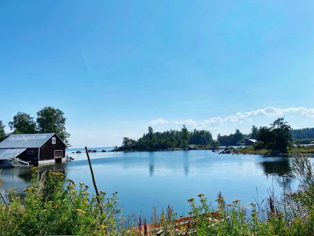 Gåsholma