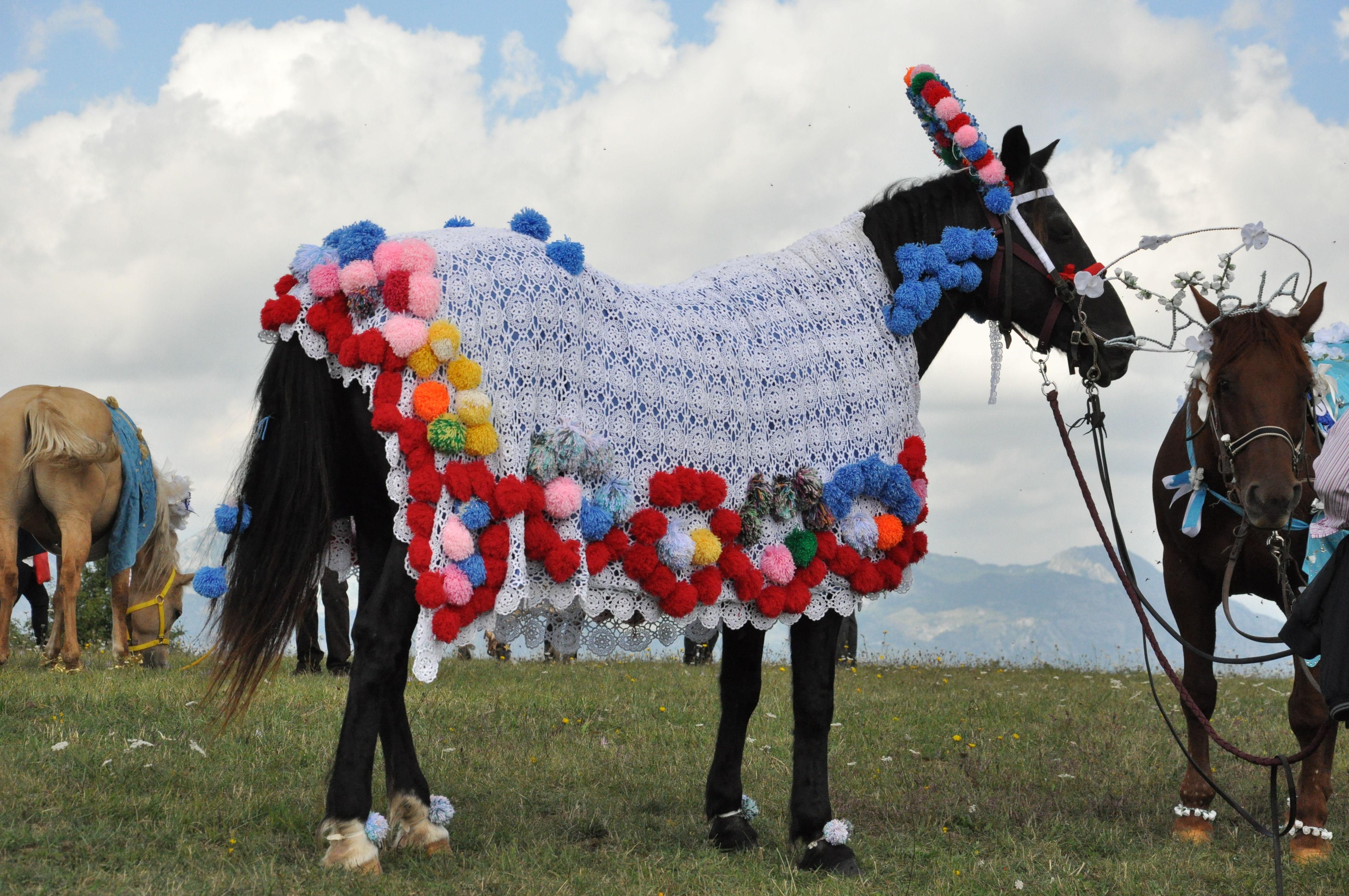 Cavalli Bardati Capracotta