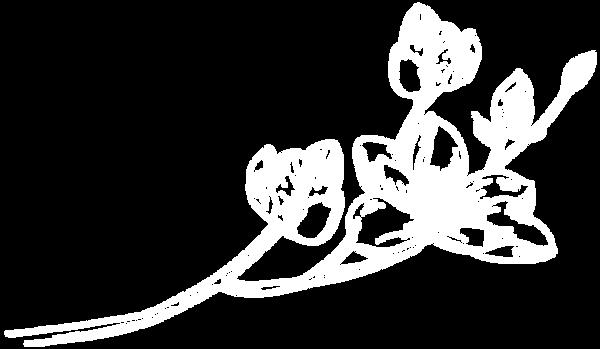 Цветок1_белый.png