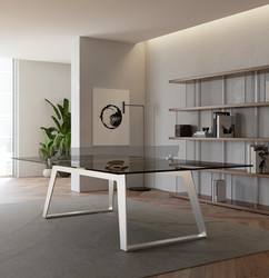 C5 Ping Pong/Dining Table