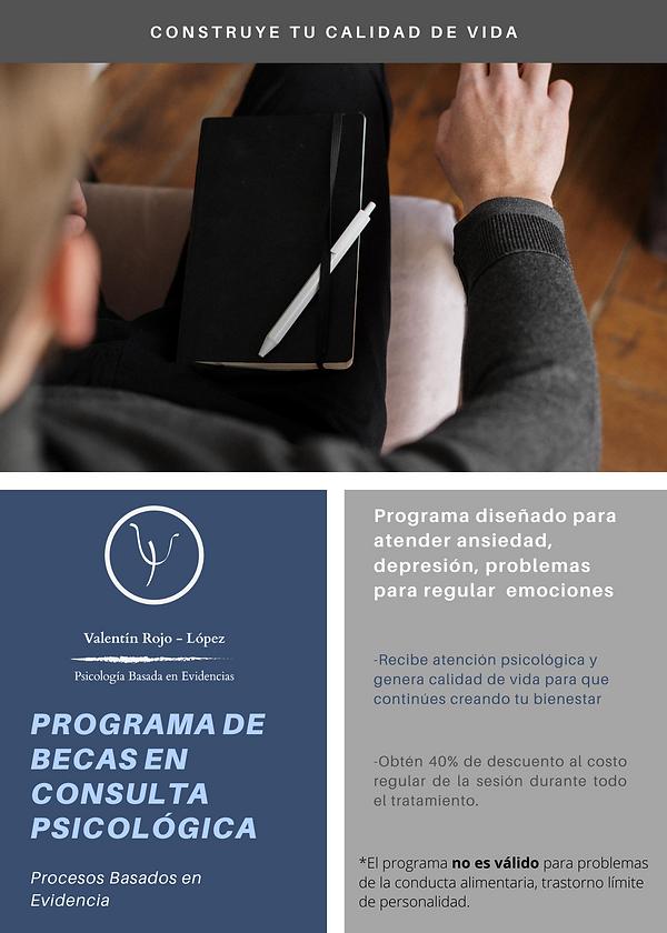 Programa de Becas 2020 2.png