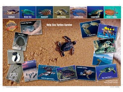 Waterproof Fish ID Card of Turtles