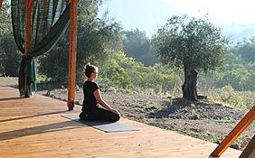 mayana yoga hennigsdorf reiki