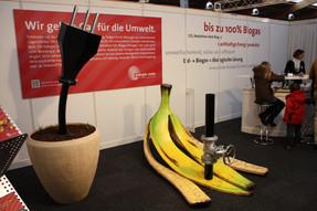 Bananenschale_und_Stecker_für_Energie_Uster.jpg