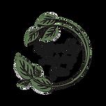NEW_NTY_Logo_TRANSPARENT_black.png