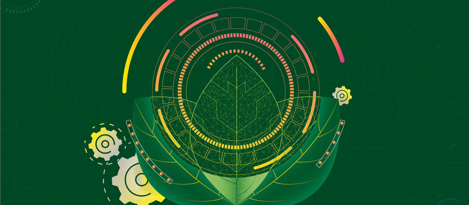 How AI Startup Pachama Wants to Make Carbon Offsets More Transparent
