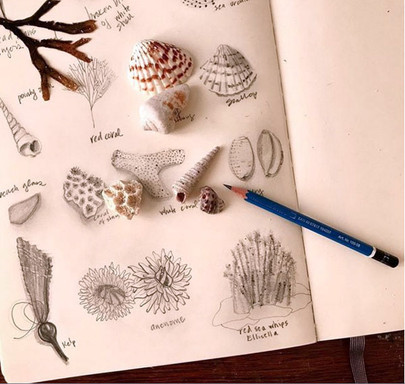 seashell thinking.jpg