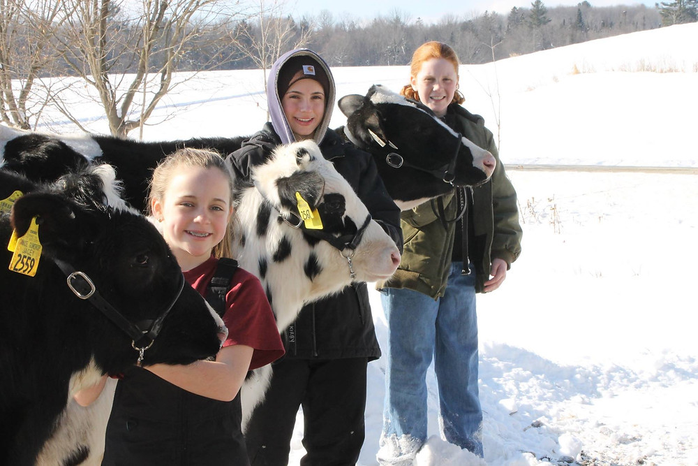 4-Hers work with their animals all year long to get ready for the Show Season