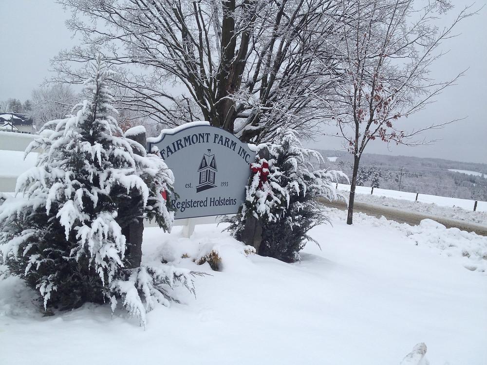 winter sign w view.JPG