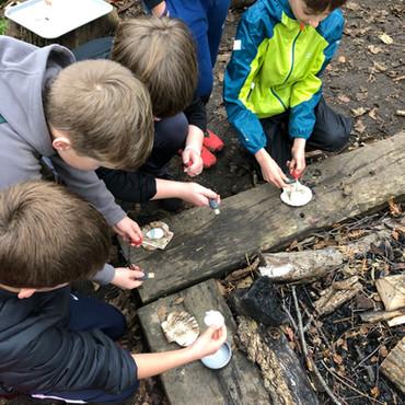 Y5 Forest School: Perseverance is key