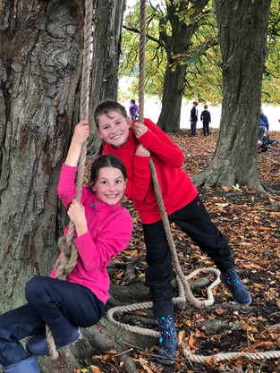 Y5 Forest School: Team work!