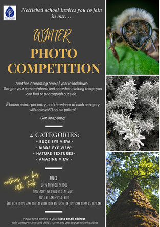 Winter Photography Competition