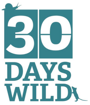 Amazing June - 30 Days Wild