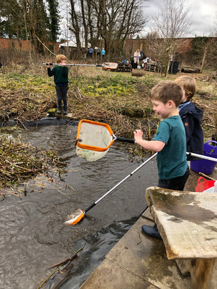 Y2: Pond Lessons
