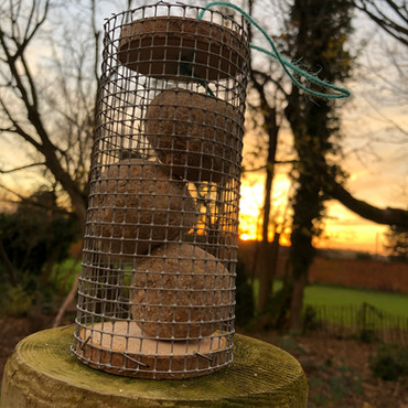 Y2 Forest School: Bird Feeders and Face Painting