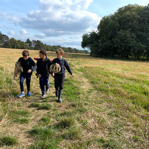 Y5 Forest School: Off to the Copse...