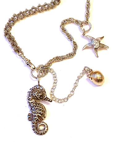 Seahorse Starfish Shell