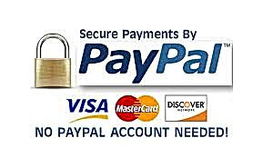 paypal logo 4.jpeg