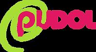 Schweizer Reinigungsmittel Hersteller Pudol