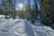Winterwandern_Rossweid_Saliwideli_CP.jpg