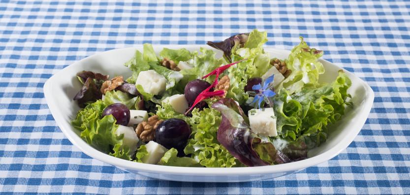 Verschiedene Blattsalate mit Entlebucher Feta