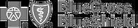Logo for Blue Cross Blue Shield Health Insurance