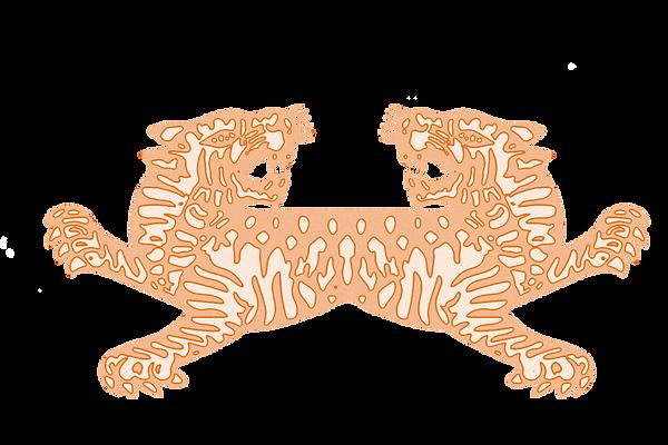 tiger flash.png