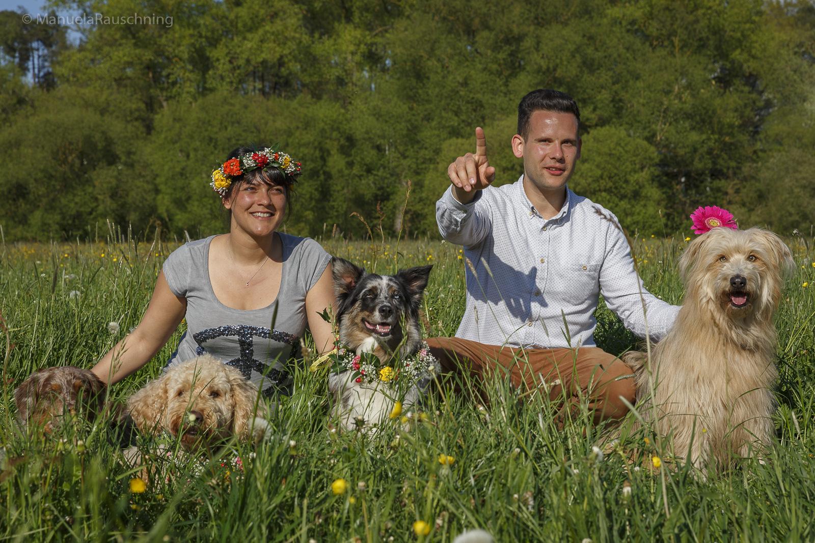 Hundefotografie Bilderrausch