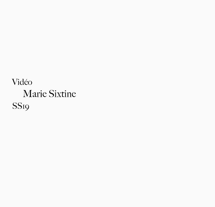 video MS.jpg