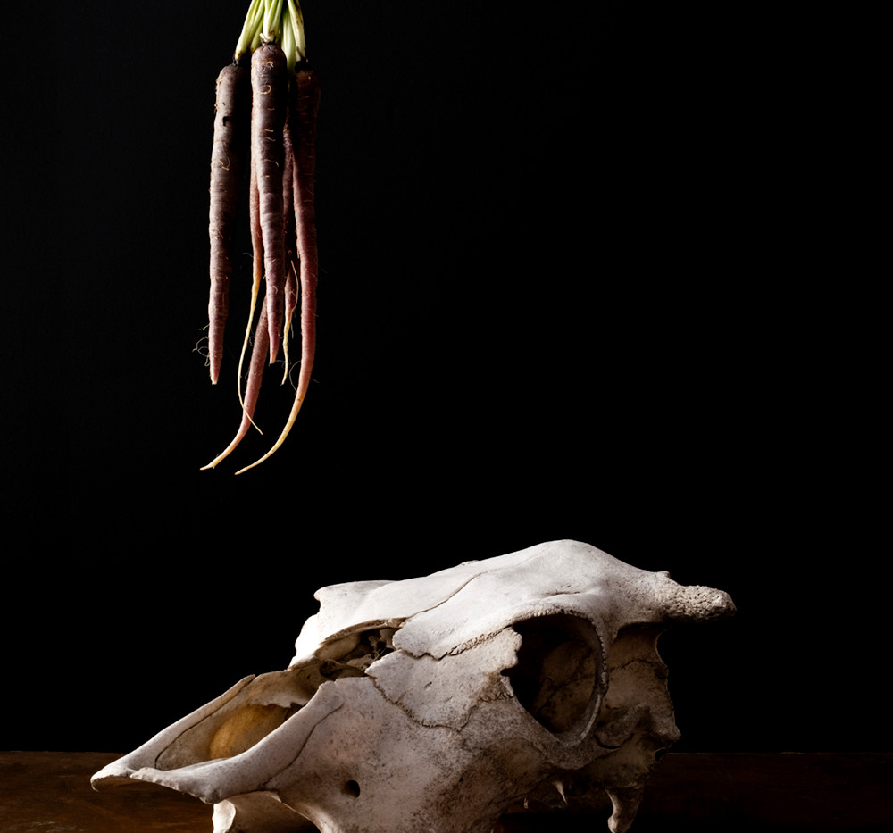Photograph of Carrot, Cow from the series Bodegón (Still Life)