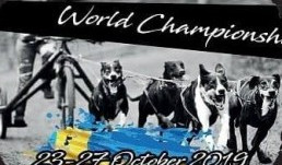 Mistrovství světa ve švédském Nybru