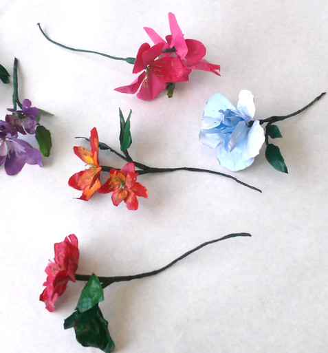 How Art Changed Science: Harvard's Glass Flowers