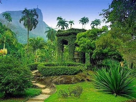 ботанический сад рио.jpg