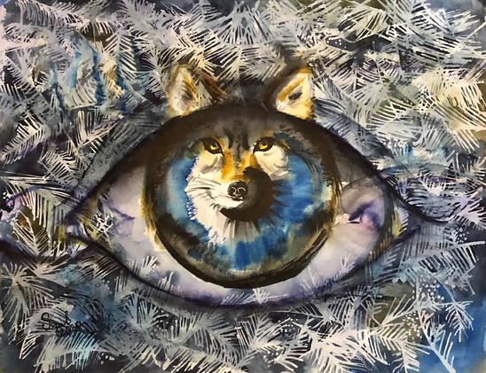 an eye wolf