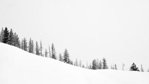 Jackson snow