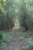 Sentiers pédestres Lacolle