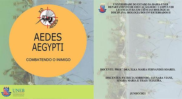 AEDES AEGYPTI_capa_Cartilha_2021.1.jpg