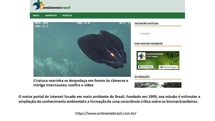 Ambiente Brasil_12.jpg