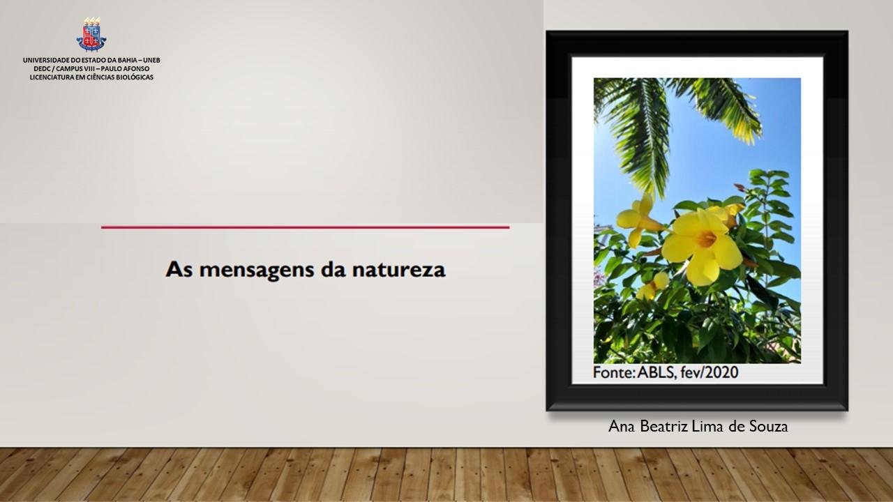 As mensagens da natureza