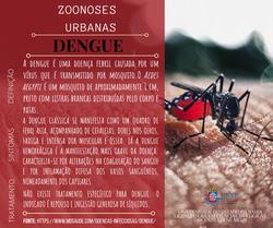 Card_Dengue