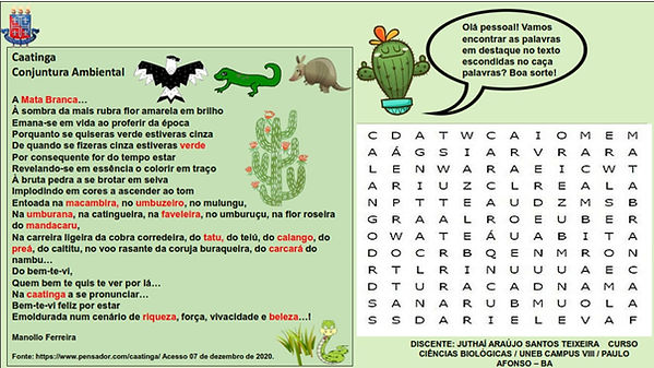 Caça-palavras_Caatinga.jpg