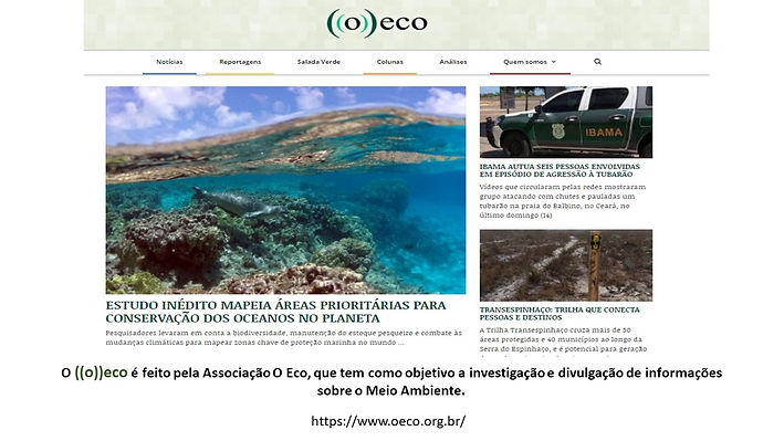 O eco_5.jpg