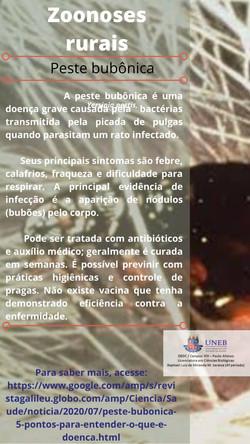 Card_PesteBulbônica