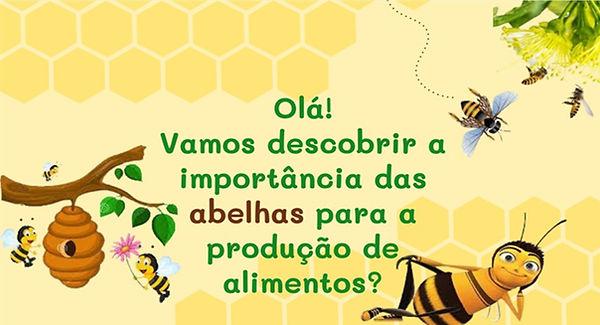 ABELHAS_capa_cartilhas_2021.1.jpg