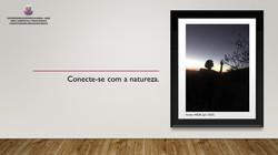 Conecte-se com a natureza